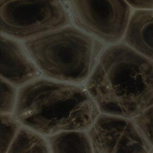 tartaruga granite